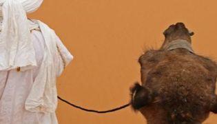 Marokko - Minztee, Berber und Tadjine