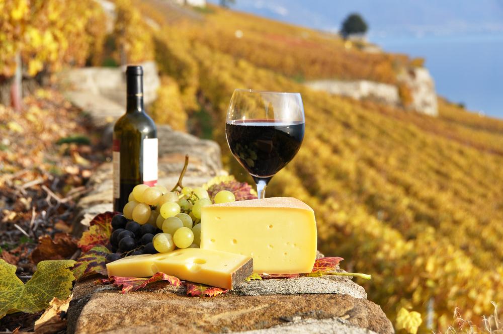 Landschaft, Wein und Käse