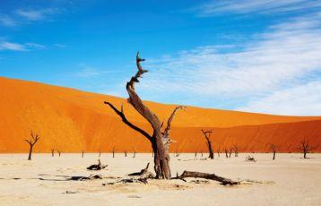 Windhoek Safari Reisen 9 Tage ab 4.990 €