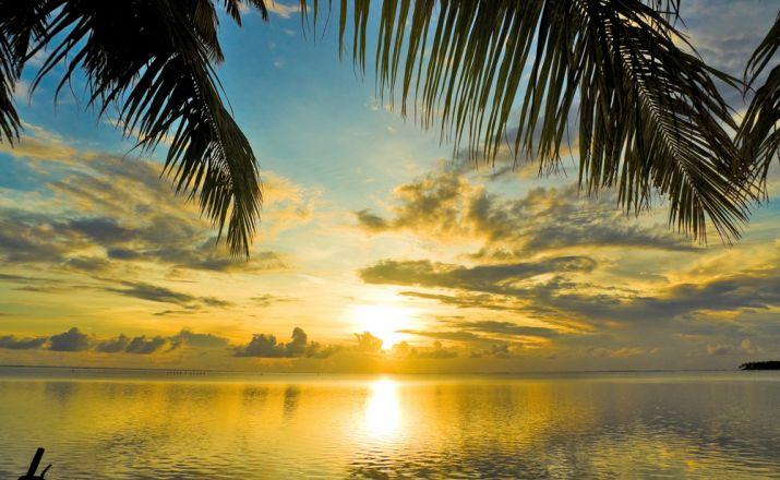 Große Privatrundreise Guyana & Barbados: Mit Flugzeug, Geländeauto und Boot; 16-tägige Privatrundreise; garantierte Durchführung ab 2 Personen Libos Fertig Touristik 1