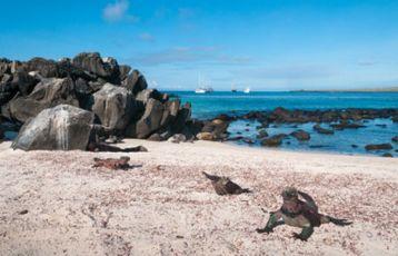 Ecuador Abenteuerurlaub 14 Tage ab 4.799 €