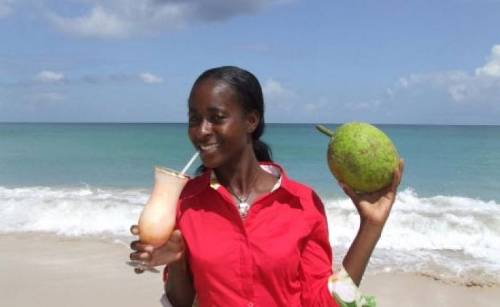 Inselhüpfen Tobago & Barbados; 16-tägige Privatrundreise; garantierte Durchführung ab 2 Personen Libos Fertig Touristik 1