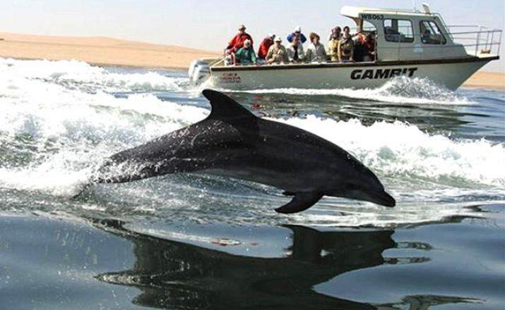 Große Rundreise durch Namibia Südafrika Deluxe 1