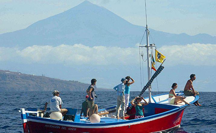 Ozeanische Wochen Klassik - Wale & Delfine vor La Gomeras Küsten OCEANO MEERZEIT Reisen 1