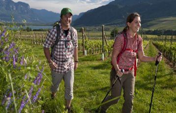 Trentino-Südtirol Wanderreisen 9 Tage ab 729 €