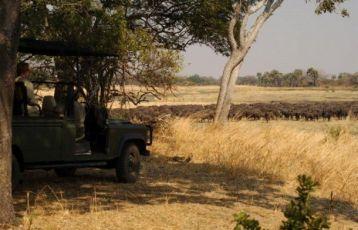 Tansania Safari Reisen 0 Tage ab 0 €
