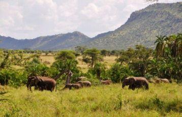 Tansania Wanderreisen 0 Tage ab 0 €
