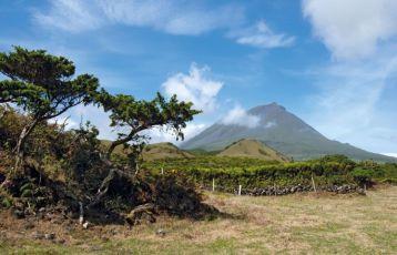 Der Vulkan Pico auf der gleichnamigen Insel