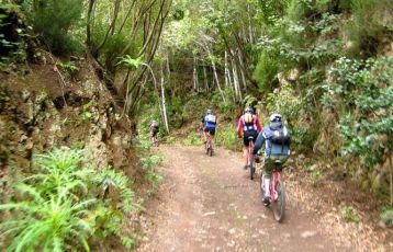 Tour durch den Regenwald der Insel