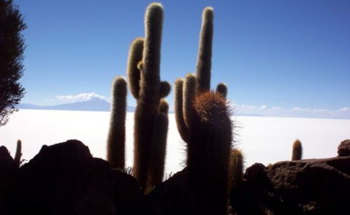 Vulkane in Südbolivien Thomas Wilken Tours 1