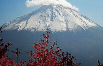 Japan - Makaken, Geishas und Fuji-san
