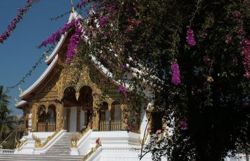 Laos Rundreisen 12 Tage ab 0 €
