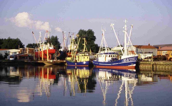 Nordsee Radeln für Singles Solos Single- und Erlebnisreisen 1