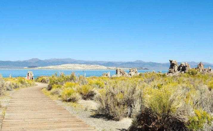 Enjoy the Coast  - 12 Tage von San Francisco nach Los Angeles TourConsult 1