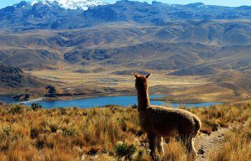 Peru Rundreisen 17 Tage ab 1.785 €