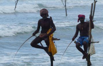 Stelzenfischer im Süden Sri Lankas
