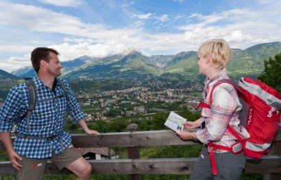 Südtiroler Wein- & Almenweg