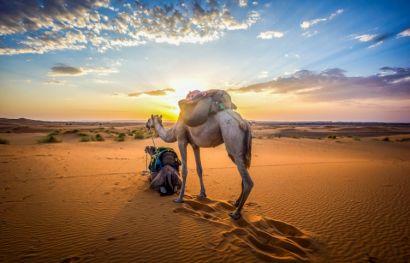 Rundreise Südmarokko und Atlantik ab Marrakesch