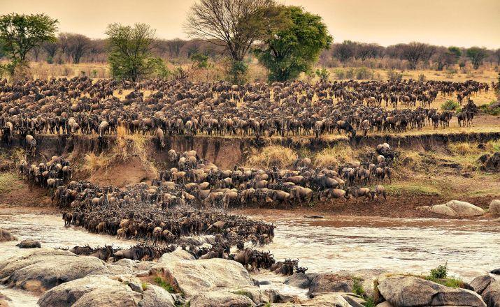 Die Höhepunkte Tansanias - Kleingruppenreise (2019) Abendsonne Afrika GmbH 1