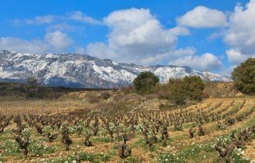 Kulinarische Nächte in Spanien