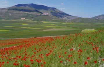 Ascoli Piceno Aktiv- und Sportreisen 8 Tage ab 1.550 €
