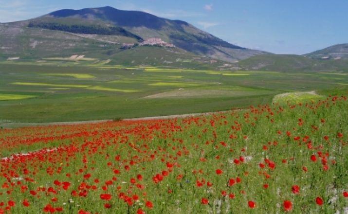 Wandern mit allen Sinnen im Reich der Sibilla UHK Spezialreisen Italien UG (haftungsbeschränkt) & Co.KG 1