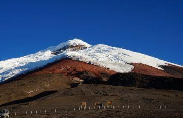 Ecuador Gruppenreisen 21 Tage ab 4.740 €