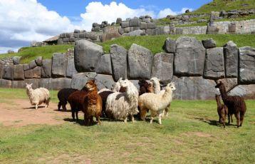 Peru Gruppenreisen 14 Tage ab 2.590 €