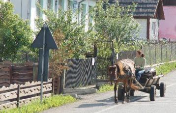 Bukarest Studienreisen 8 Tage ab 805 €