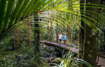Neuseeland Rundreisen vom deutschsprachigen Spezialisten vor Ort