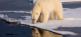 Eisiges Spitzbergen - Micro-Expeditions-Kreuzfahrt mit max. 12 Gästen PB Reisen - Designed to Travel! 4