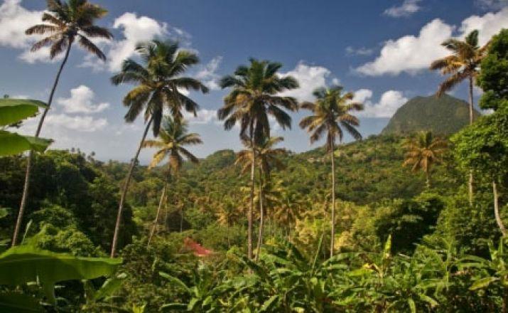 Saint Lucia erfahren: Rundreise mit Auto & Hotels; 17-tägige Privatrundreise; garantierte Durchführung ab 2 Personen Libos Fertig Touristik 1