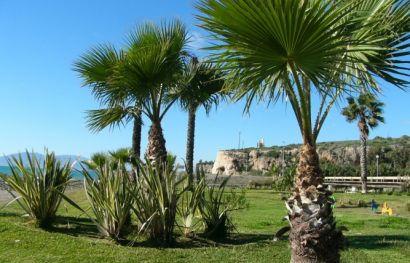 Singlereise in die andalusische Sonne