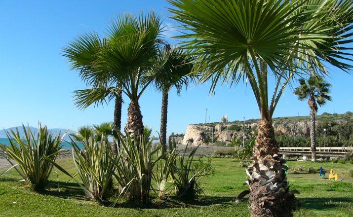 Singleurlaub nach Spanien