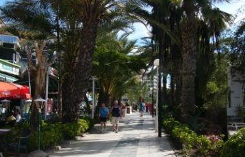 Kanarische Inseln Singlereisen 8 Tage ab 1.348 €