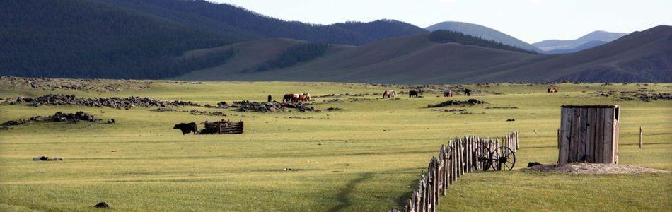 Mongolei - Reisen durch weite Steppen