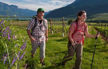 Trentino-Südtirol Aktiv- und Sportreisen 8 Tage ab 669 €