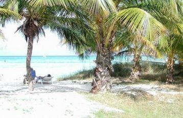 Kuba Singlereisen 13 Tage ab 1.499 €
